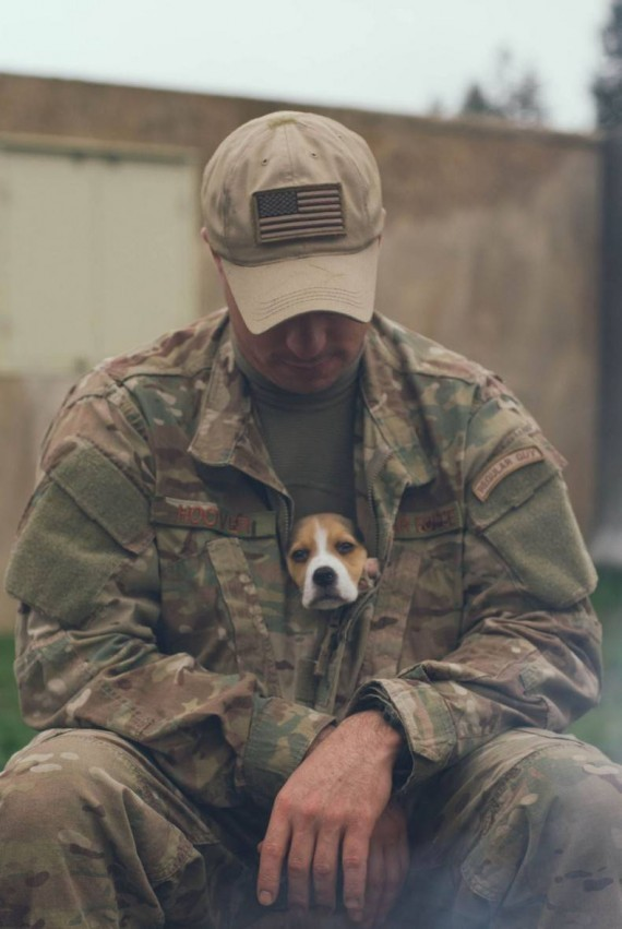 Soldiers Find Comfort And Love In Animals While On The