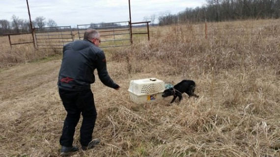 They opened the carrier and were shocked to see a starving dog inside.  The dog came out, but was hunched over from being locked inside for so long.