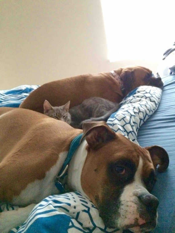 """3) """"Went home sick yesterday, this was my feel better crew all afternoon."""""""