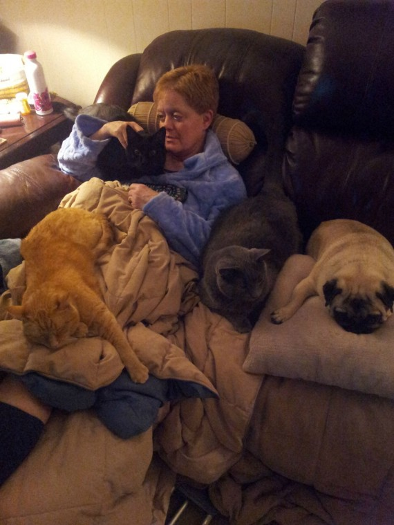 """4) """"My mom just had a double knee surgery. Her pets have made it their responsibility to comfort her."""""""