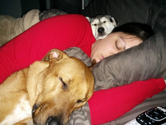 "8) ""Wife has been sick. Our pups seem to know she isn't feeling well ... """