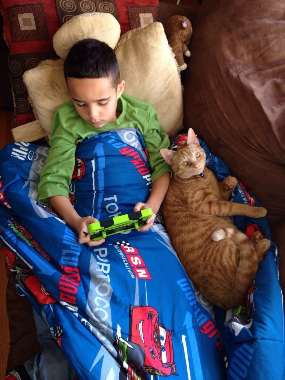 "9) ""My son is not feeling well, our cat (Simba) hasn't left his side."""