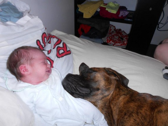 8) Wow, a new baby AND a new pillow!""