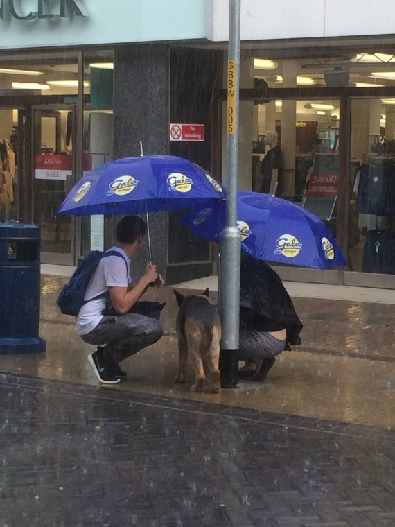 """It really is quite heart warming to see acts of kindness like this."""
