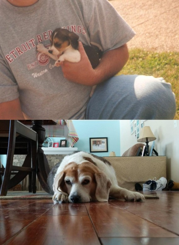 """12) """"The first and last photos of my best friend."""""""