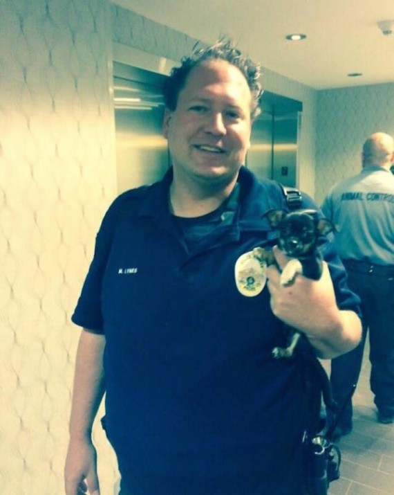 Detective Mike Lynes found this puppy on the bathroom floor during a drug bust. He was not about to leave her behind...