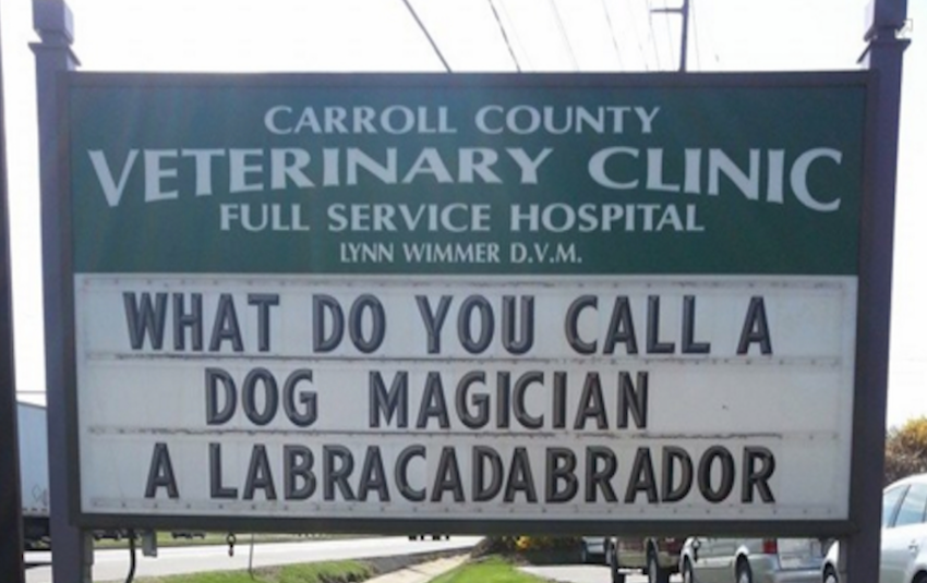 15 Hilarious Vet Signs That Will Make Anyone S Day Thethings