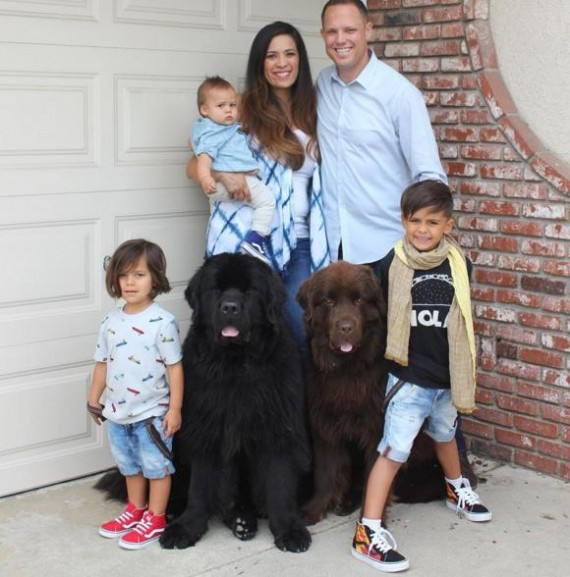 The Fisher family wanted to add to their family and decided on a breed of dog known for getting along with kids.