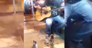 unexpected audience