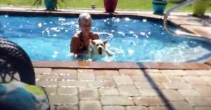 westie in swimming pool