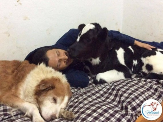 Sri Ram and Bernie also spend time with the older dogs and human friends.